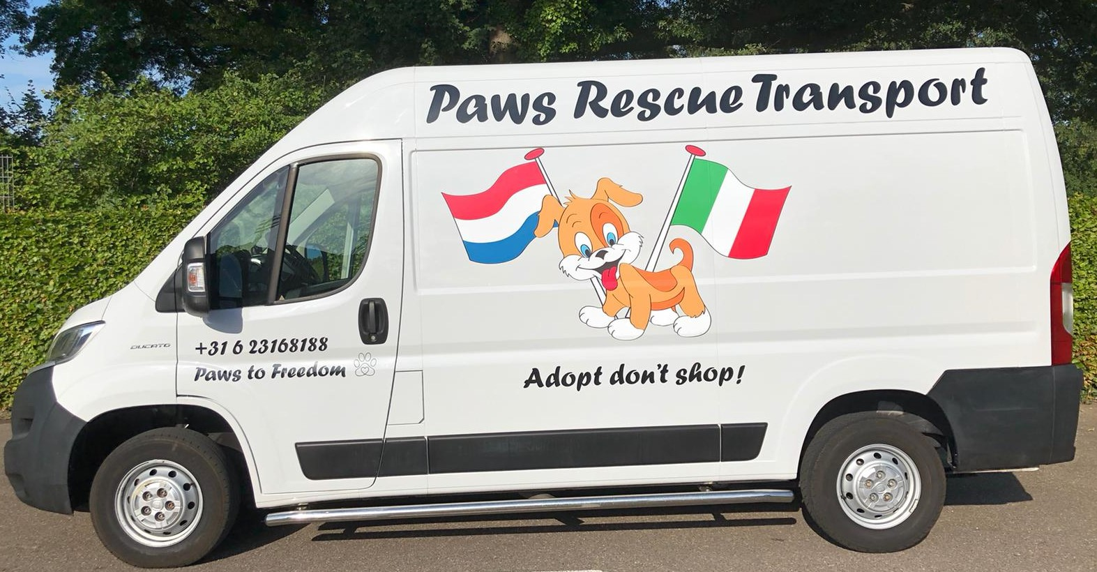 Puppy Rescue Bus